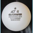 Мячи тренировочные Sanwei ABS 40+ 1* 1 шт.