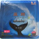 Whale II Untuned